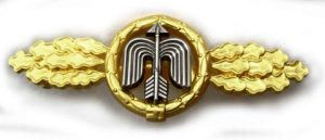 Luftwaffe day fighter clasp in gold