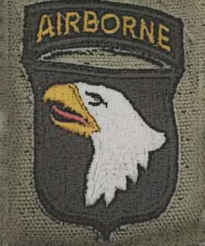 US & Allied insignia